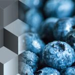 Kyani Alaskan Blueberry supplement